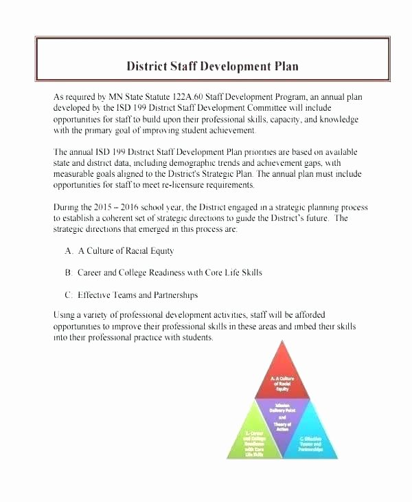 Fundraising Development Plan Template Awesome Fundraising Plan Template Sterling Philanthropy