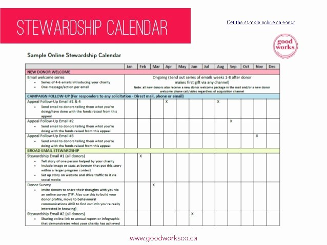 Fundraising Development Plan Template Elegant Fundraising Plan Template