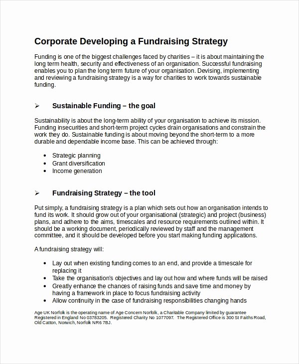 Fundraising Development Plan Template Fresh Fundraising Strategy Template 6 Free Word Pdf Document