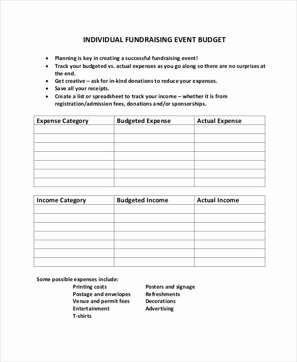 Fundraising event Planning Template Fresh 10 Fundraising Bud Templates Free Sample Example
