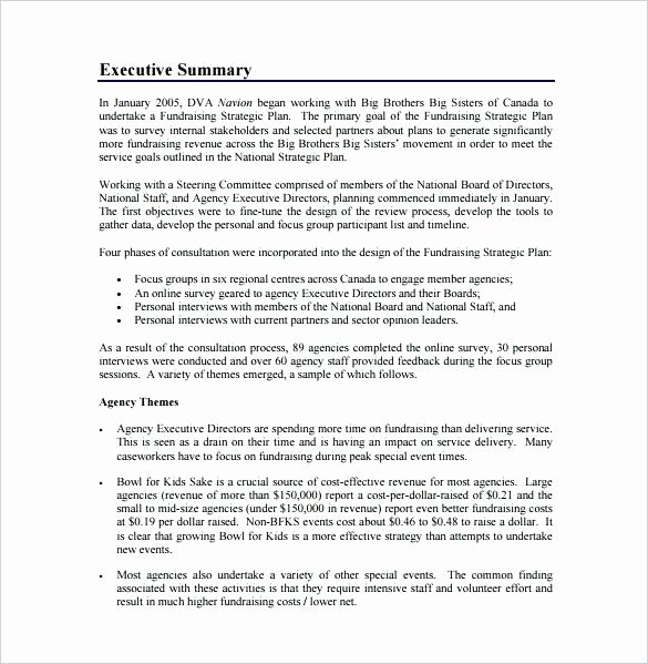 Fundraising event Planning Template Luxury Fundraising Plan Template – Azserverfo