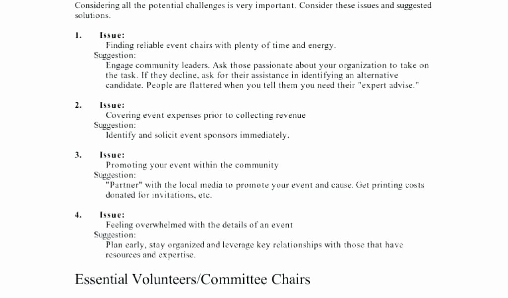 Fundraising event Planning Template New Fundraising event Planning Timeline Template Charity