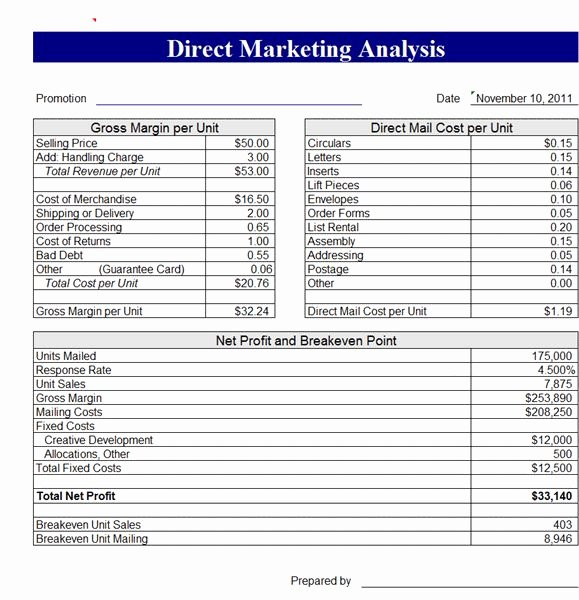 Global Cash Flow Template Luxury Global Cash Flow Analysis Template Download 3 Year Cash