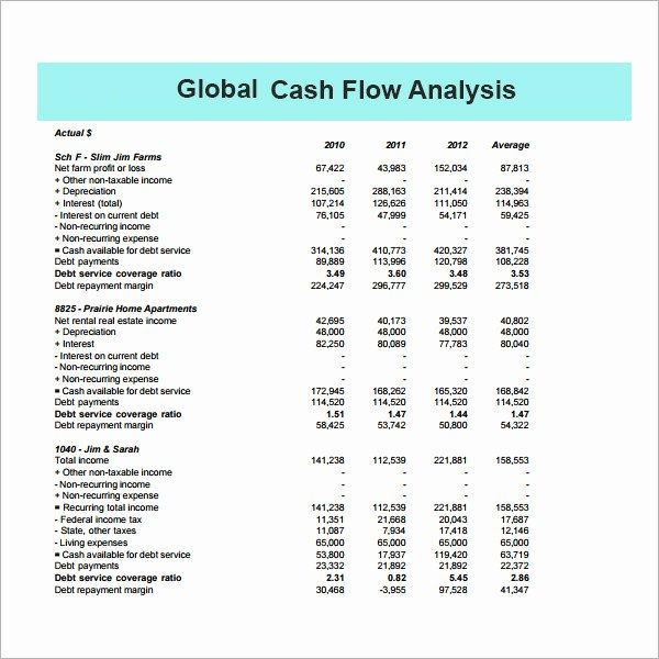Global Cash Flow Template New 12 Cash Flow Analysis Samples