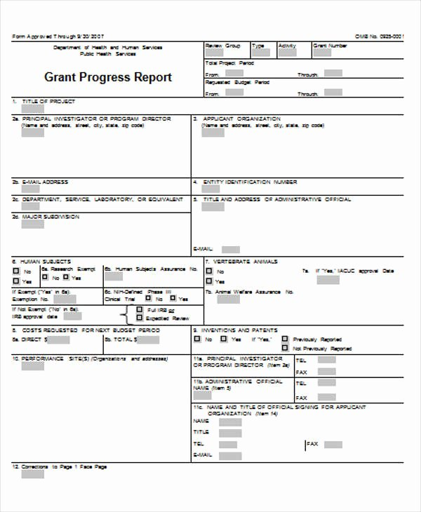 Grant Financial Report Template Awesome 70 Report Samples In Doc
