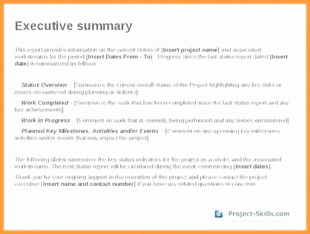 Grant Financial Report Template Awesome event Summary Report Template Post event Summary Report