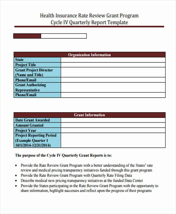 Grant Financial Report Template Beautiful 6 Grant Report Templates Free Word Pdf format Download