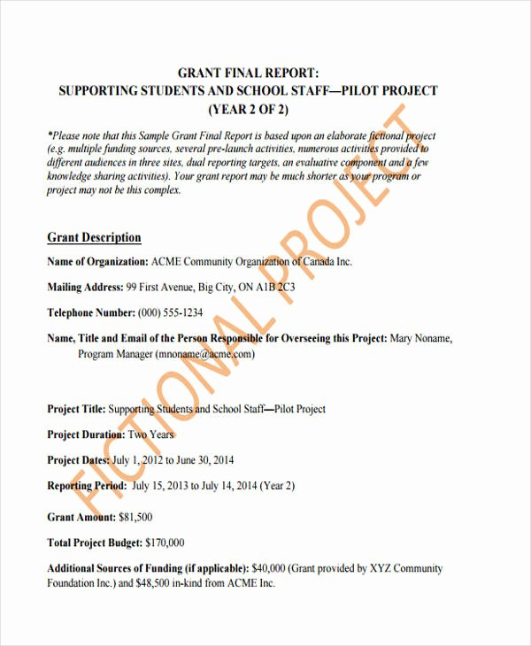 Grant Financial Report Template Best Of 10 Grant Report Templates