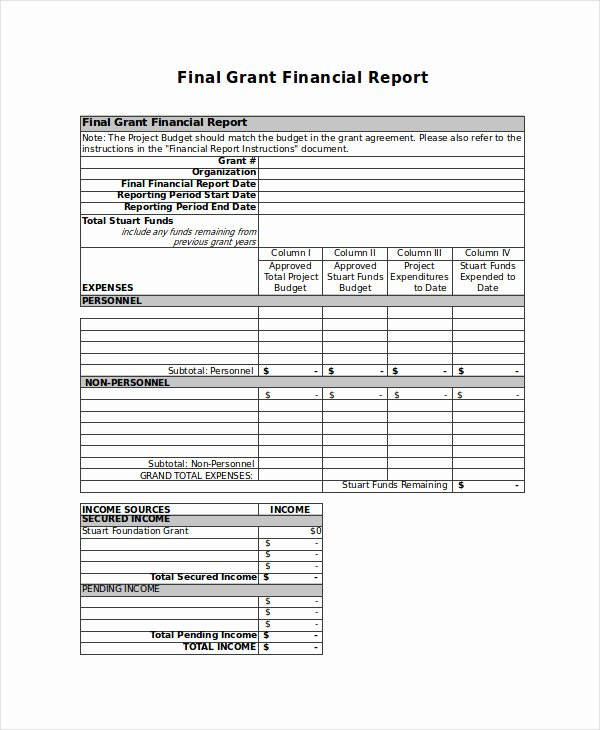 Grant Financial Report Template Elegant 36 Report Examples In Excel