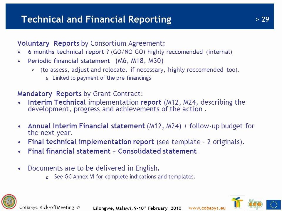 Grant Financial Report Template Elegant C O B A S Y S Nicola Dorigo Salamon Ppt