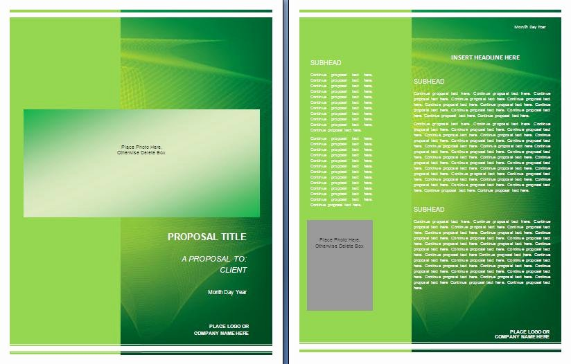 Graphic Design Proposal Template Luxury Graphic Design Proposal Template