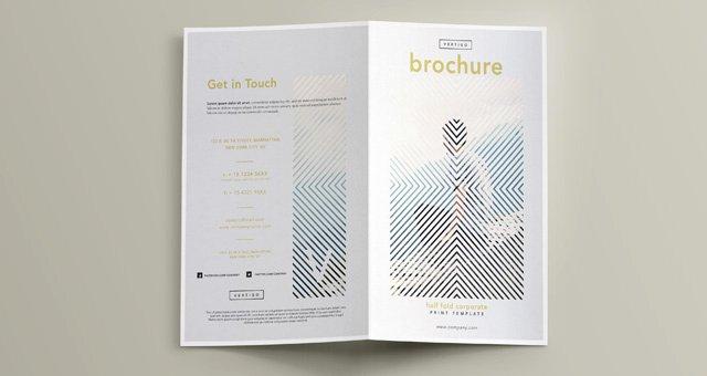 Half Fold Brochure Template Luxury Vertigo Bi Fold Brochure Template
