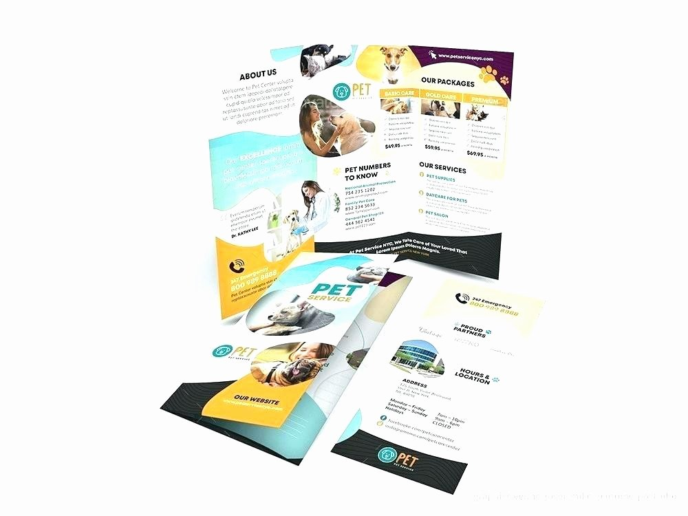 Half Page Brochure Template Awesome Free Brochure Templates Examples Corporate Fold Template
