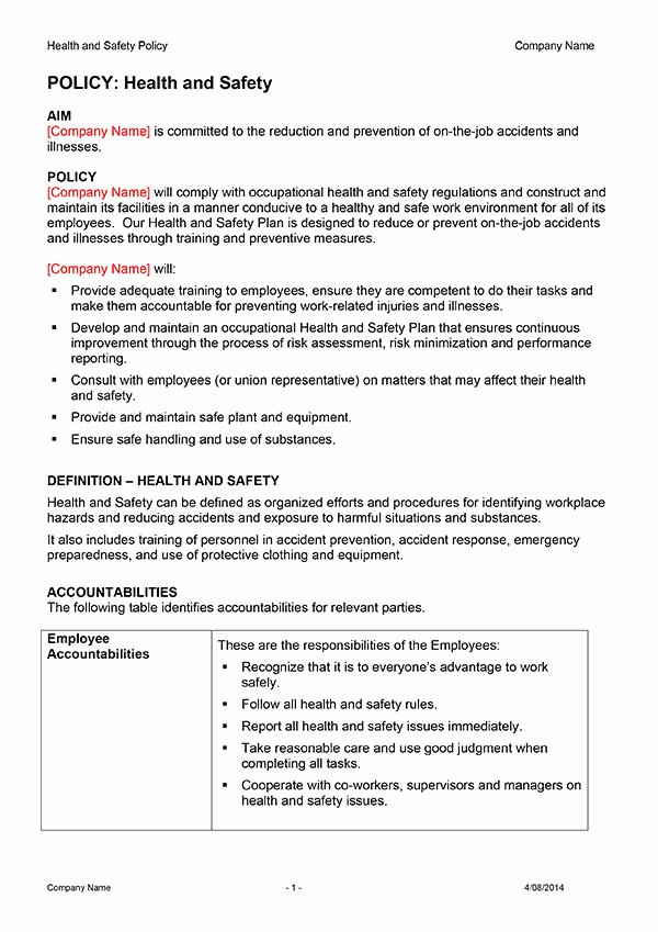 Health and Safety Plan Template Beautiful Safety Plan Template Download now
