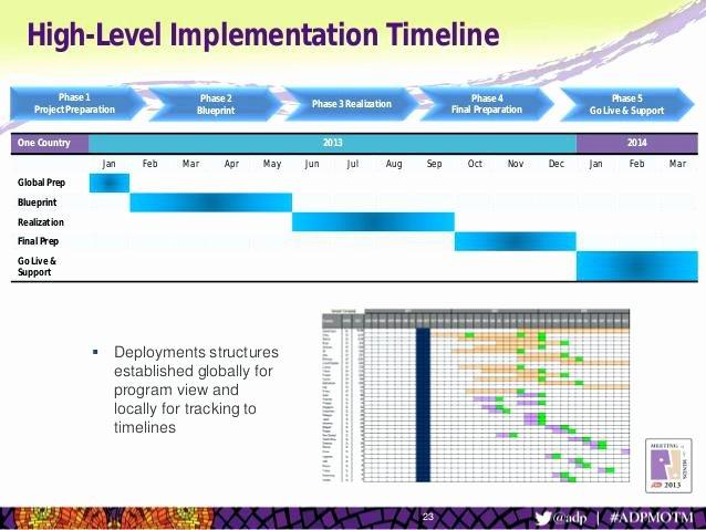 High Level Project Plan Template Elegant High Level Project Plan Template A Page Gorgeous