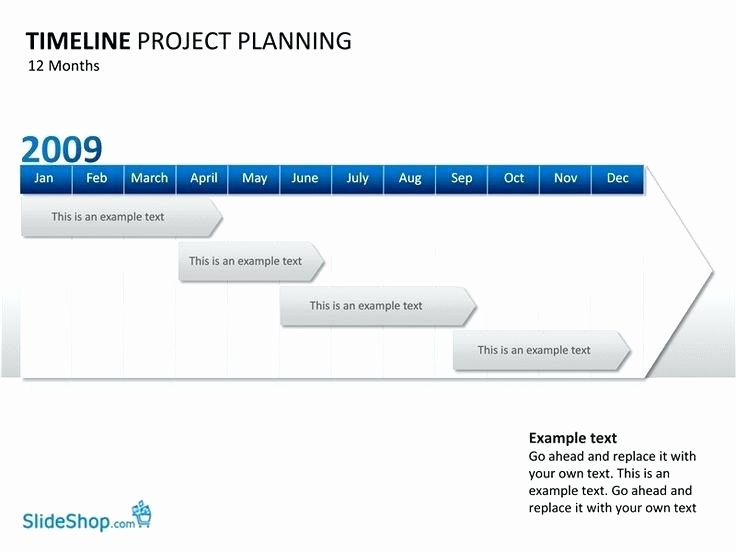 High Level Project Plan Template Elegant High Level Project Timeline Template Template