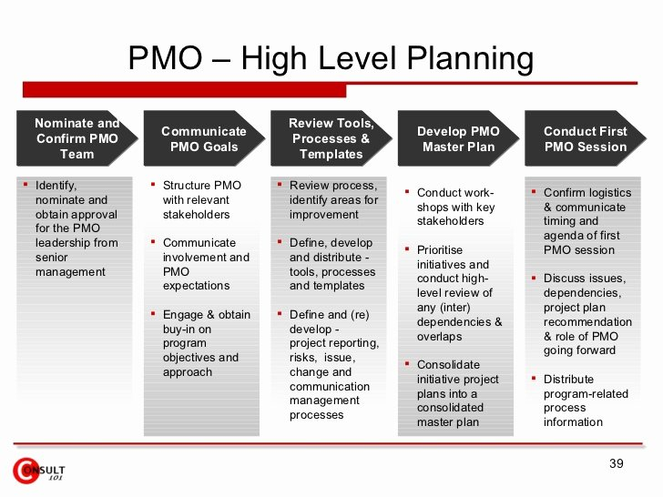 High Level Project Plan Template Luxury Project Management Fice Pmo