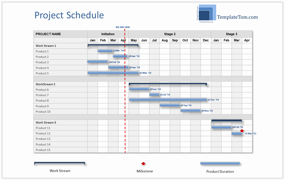 High Level Project Plan Template Unique High Level Project Schedule Summary Gantt Chart
