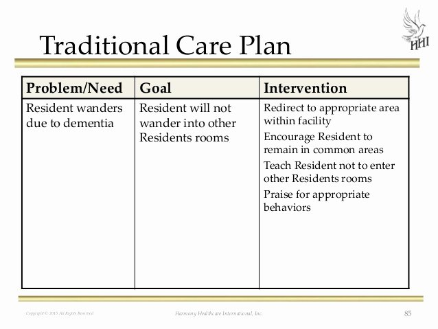 Home Health Care Plan Template Inspirational Care Home Plans Templates Sample Plan Template Walter