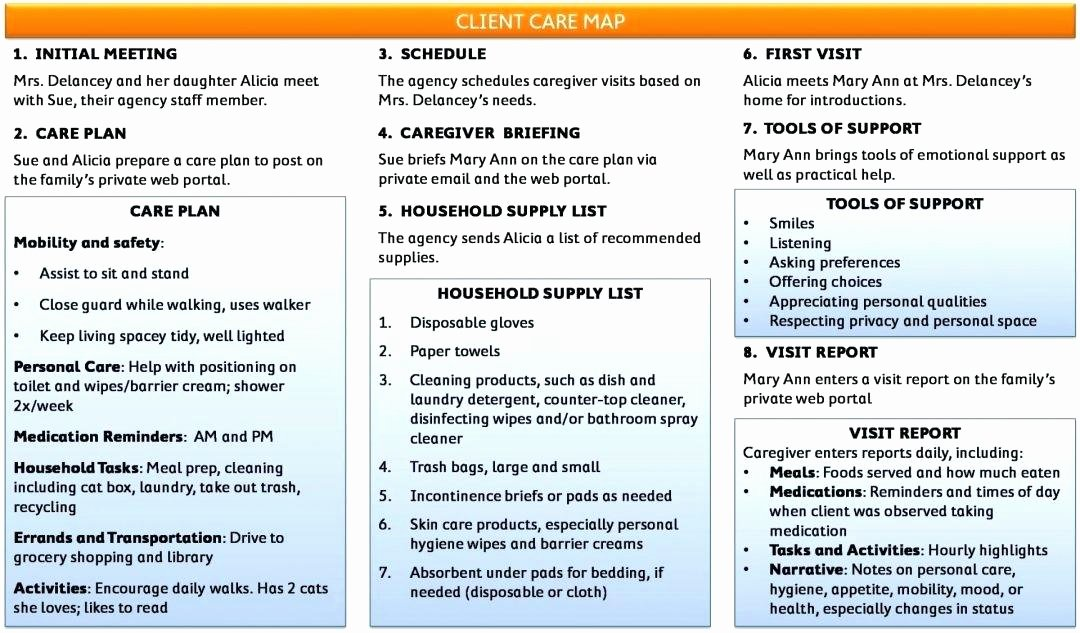 Home Health Care Plan Template Inspirational Personal Health Bud Support Plan Template Personal