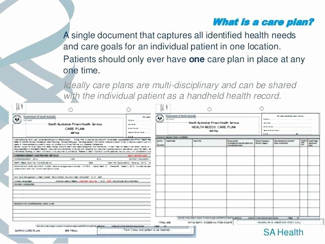 Home Health Care Plan Template Unique Care Home Plans Templates Study Hypertension Presentation