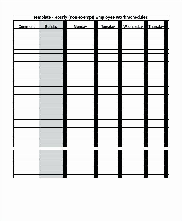 Hourly Work Schedule Template Awesome Employee Work Schedule Template – Callatishighfo