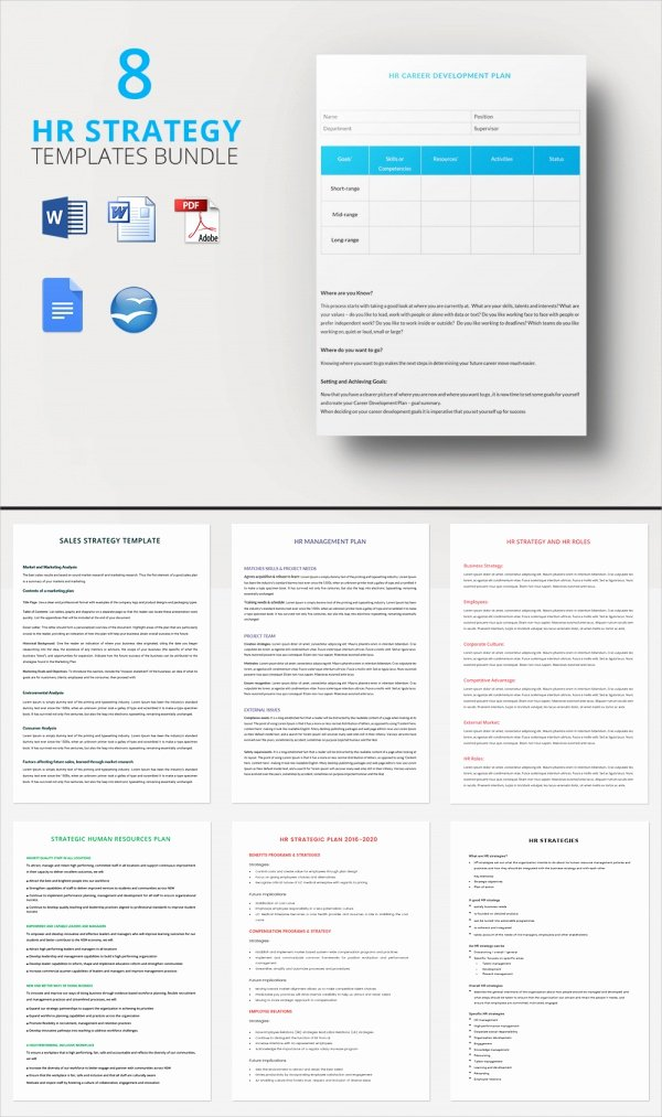 Hr Strategic Plan Template Inspirational 17 Sample Hr Strategy Templates