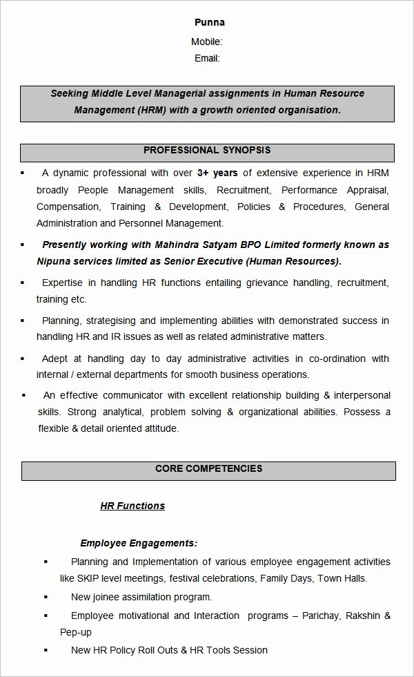 Human Resource Manager Resume Template Awesome 21 Hr Resume Templates Doc