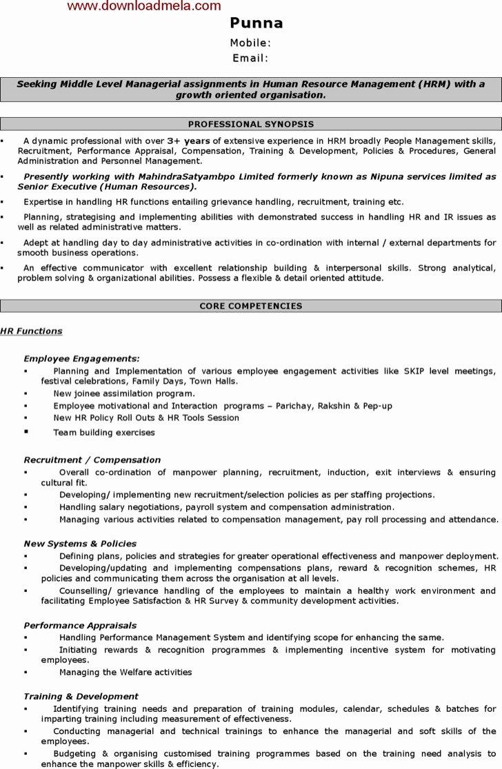 Human Resource Manager Resume Template Elegant 15 Hr Resume Template Free Download