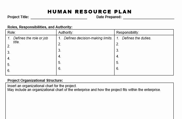 Human Resource Plan Template Awesome Human Resource Plan