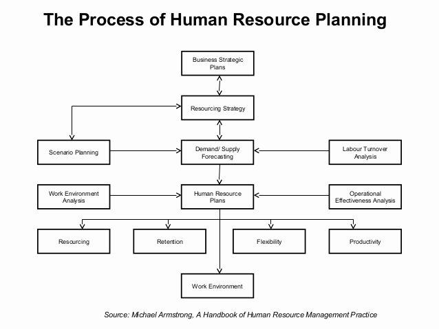 Human Resource Plan Template Lovely 59 Fantastic Business Plan Flow Chart Template