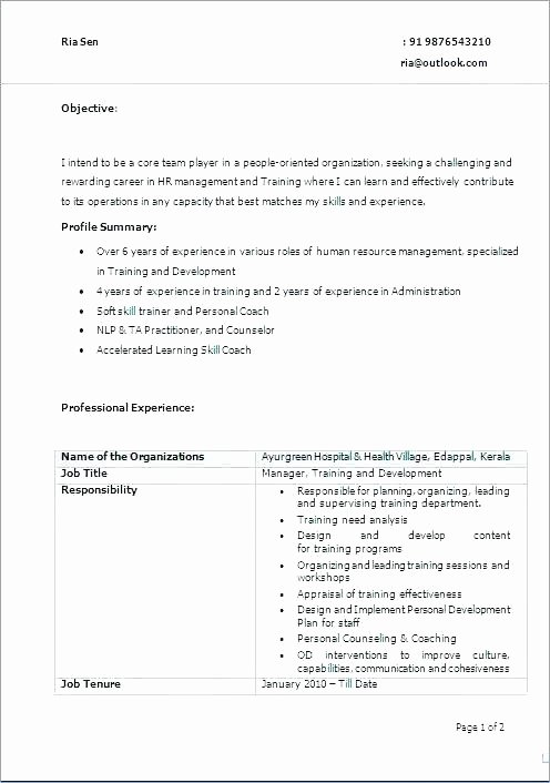 Human Resource Plan Template Unique Human Resource Plan Template Hr Strategic Plan Template