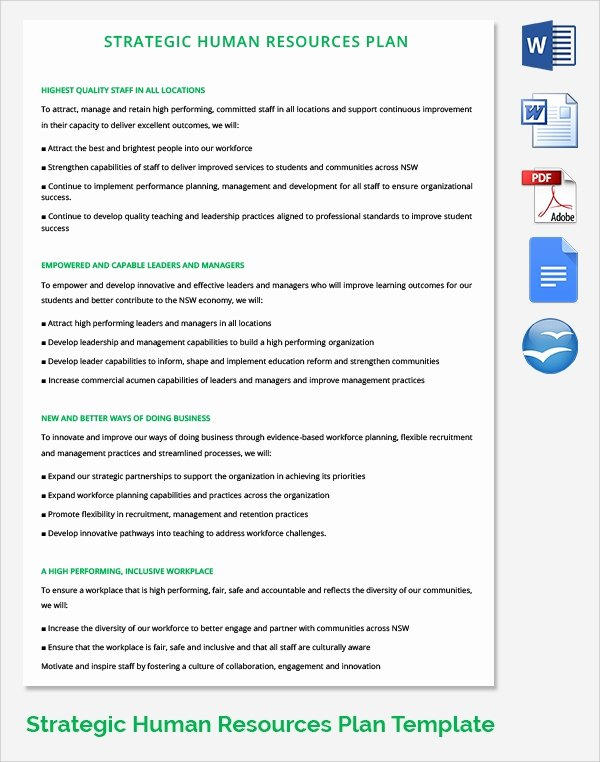 Human Resource Policy Template Best Of 17 Sample Hr Strategy Templates