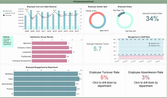 Human Resources Dashboard Template Elegant Human Resources Dashboards