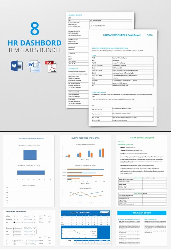 Human Resources Dashboard Template Unique Hr Dashboard Template 23 Free Word Excel Pdf