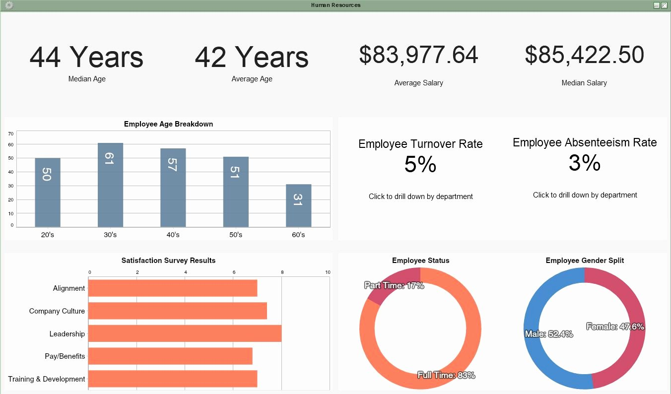 Human Resources Dashboard Template Unique Live Interactive Dashboard Examples