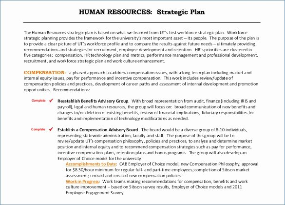 Human Resources Strategic Planning Template Awesome 7 Human Capital Strategic Plan Examples Pdf