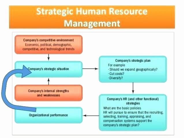Human Resources Strategic Planning Template Elegant Human Resources Strategic Plan Template Amazing Hr