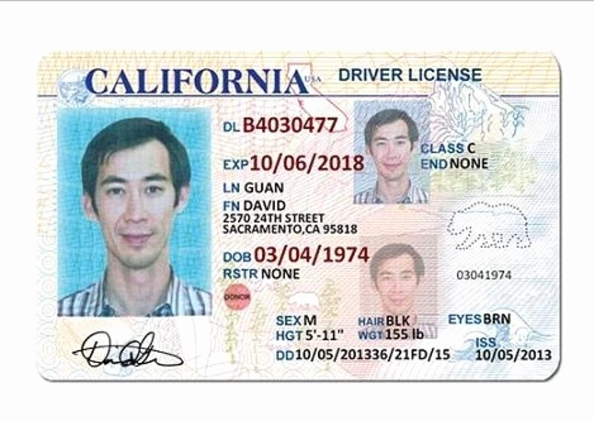 Id Card Template Photoshop Awesome California Drivers License Tt Templates