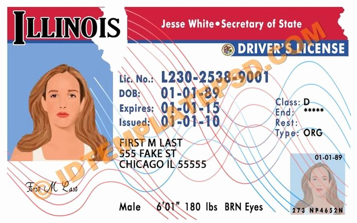 Id Card Template Photoshop Luxury 54 Best Novelty Psd Usa Driver License Template Images On