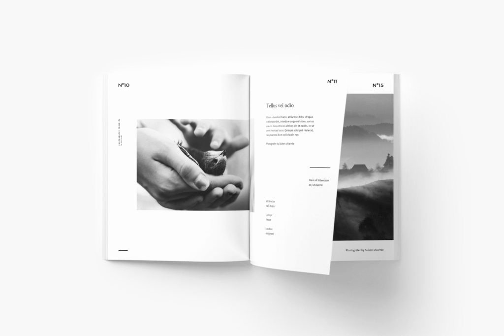 Indesign Portfolio Template Free Luxury 65 Fresh Indesign Templates and where to Find More Redokun