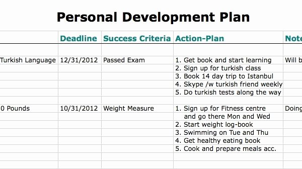 Individual Development Plan Template Excel Unique 6 Personal Development Plan Templates – Excel Pdf formats
