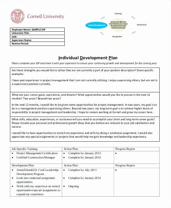 Individual Development Plan Template Excel Unique Work Development Plan Template Employee Development Plans