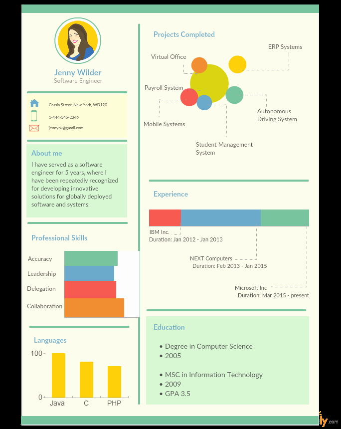 Infographic Resume Template Free Beautiful Infographic Resume Templates the Recruiters Will Love