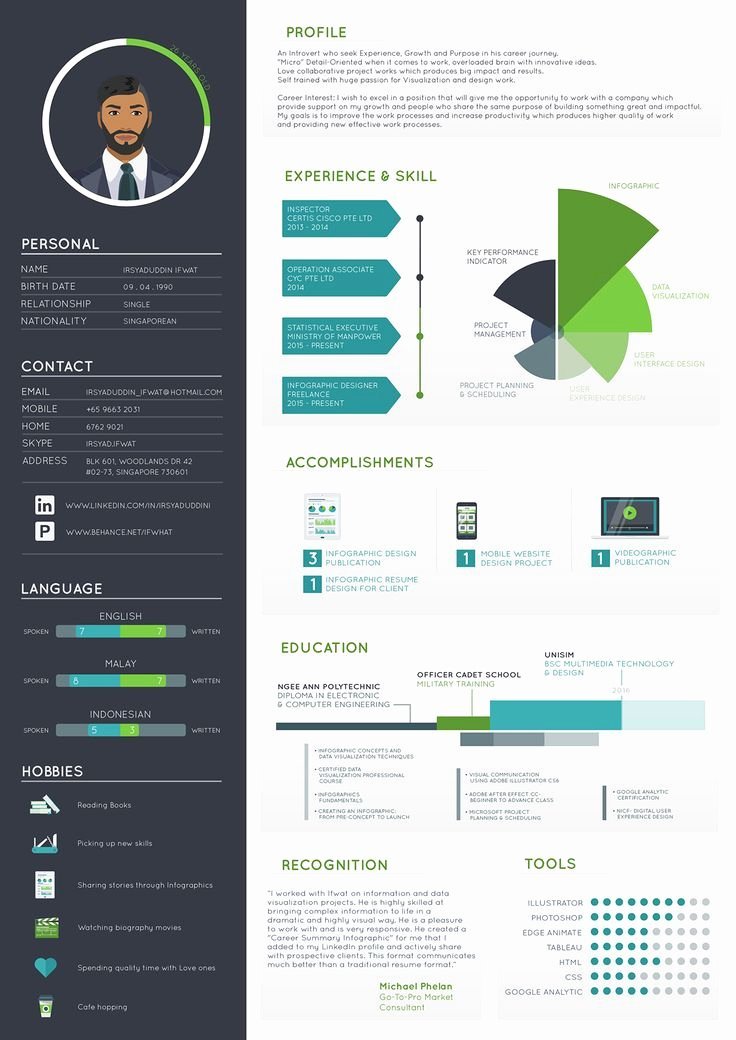 Infographic Resume Template Word Awesome 1207 Best Infographic Visual Resumes Images On Pinterest