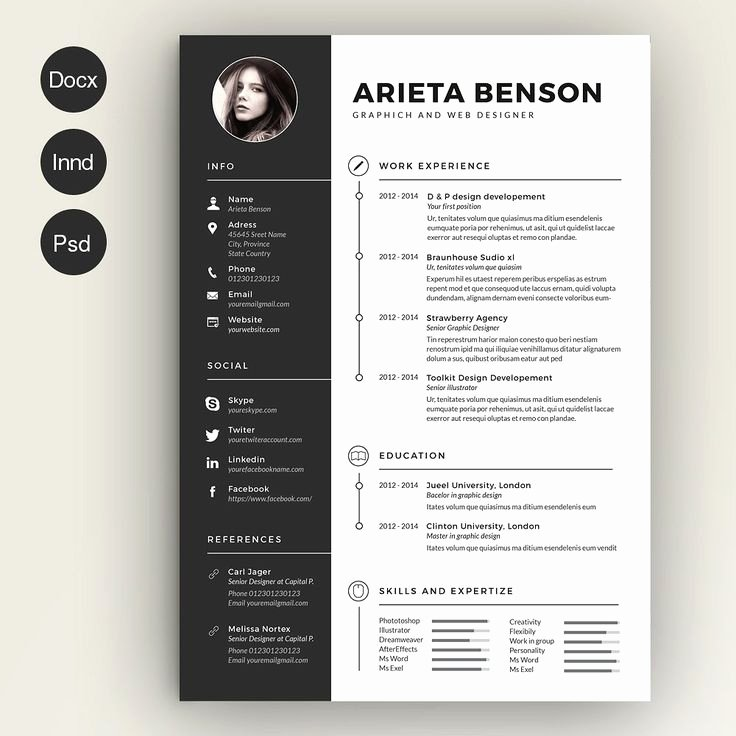 Infographic Resume Template Word Unique 17 Images About Resume Cv