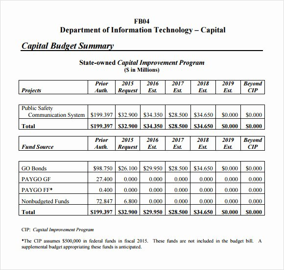 Information Technology Budget Template New 7 Bud Summary Samples