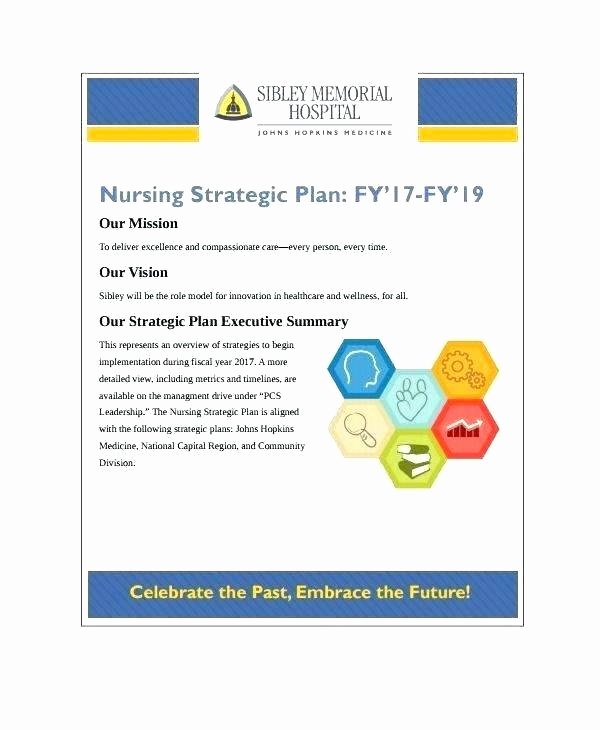 Information Technology Planning Template Inspirational 96 Information Technology Strategic Planning Template