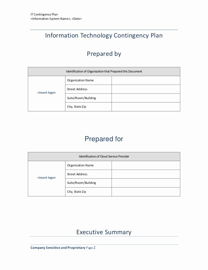 Information Technology Planning Template Unique Information Technology Contingency Plan Template