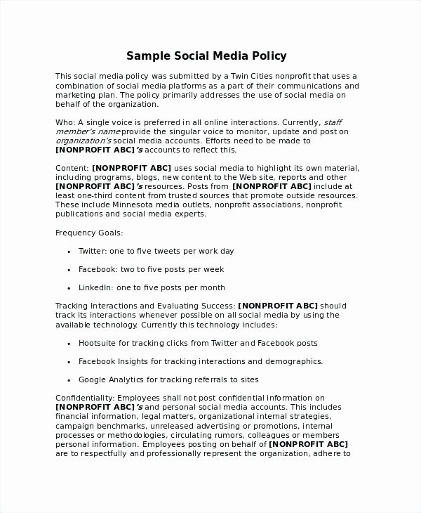 Information Technology Policy Template Elegant Resume General Manager It Template Information